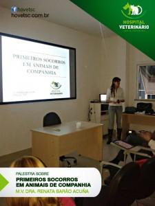 PRIMEIROS SOCORROS PARA ANIMAIS DE COMPANHIA