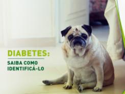 Diabetes: saiba como identificá-lo