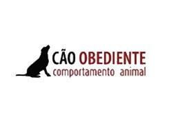 Cão Obediente